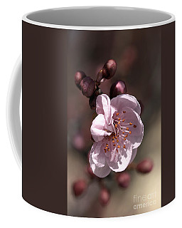 Coffee Mug featuring the photograph Spring Blossom by Joy Watson