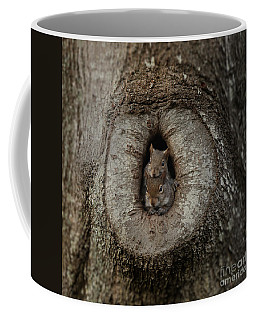 2 Squirrels In Their Tree House Coffee Mug