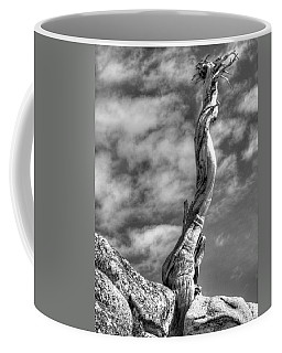 Still Standing Coffee Mug by Joe Schofield