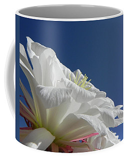 Coffee Mug featuring the photograph Striking Contrast by Deb Halloran