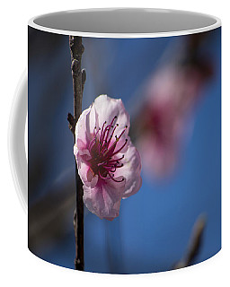 The Spring Is Coming Coffee Mug