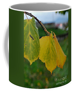Coffee Mug featuring the photograph Three by Marija Djedovic