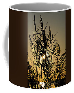 Coffee Mug featuring the photograph Whalehead Sunset Obx #3 by Greg Reed