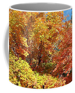 Fall Explosion Of Color Coffee Mug