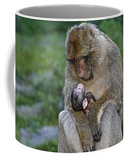 Barbary Macaque With Baby Coffee Mug