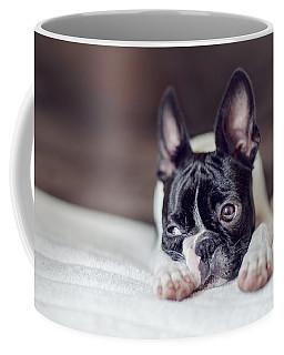 Boston Terrier Puppy Coffee Mug