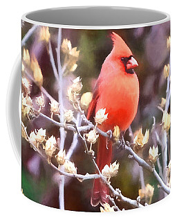 Coffee Mug featuring the photograph Cardinal by John Freidenberg