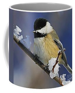 Winter Chickadee... Coffee Mug