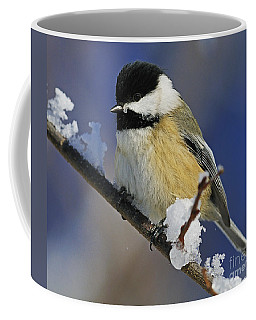 Winter Chickadee... Coffee Mug by Nina Stavlund