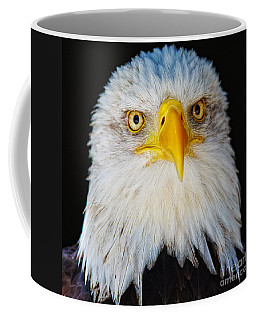 Coffee Mug featuring the photograph Closeup Portrait Of An American Bald Eagle by Nick  Biemans