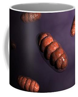 Mitochondria Coffee Mugs   Fine Art America