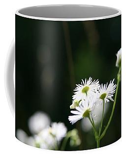 Enlightened  Coffee Mug by Neal Eslinger