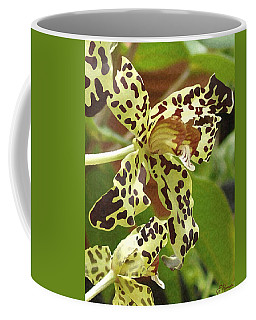 Leopard Orchids Coffee Mug