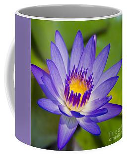 Pupukea Garden Breeze  Coffee Mug
