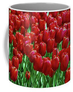 Coffee Mug featuring the photograph Red Tulips  by Allen Beatty