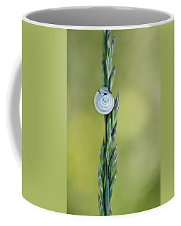 Snail On Grass Coffee Mug