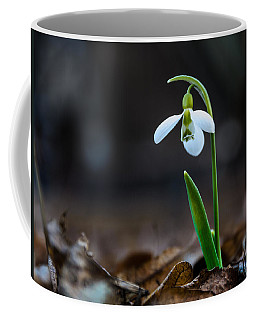Snowdrop Flower Coffee Mug