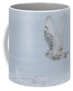 Coffee Mug featuring the photograph Snowy Owl #3/3 by Patti Deters