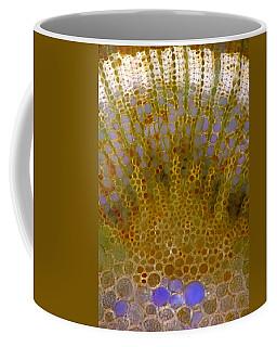 Swedish Whitebeam Stalk Tissues, Lm Coffee Mug
