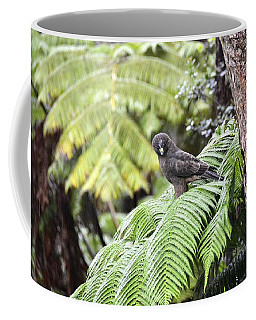 Young 'io Hawaiian Hawk Coffee Mug by Lehua Pekelo-Stearns