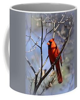 3477-006- Northern Cardinal Coffee Mug
