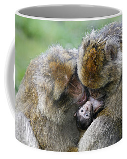 Barbary Macaques Coffee Mug