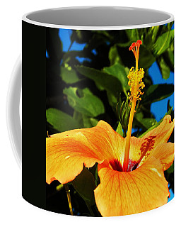 Coffee Mug featuring the photograph Untouched Beauty by Faith Williams