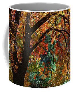 Coffee Mug featuring the photograph Fall Color by Tam Ryan