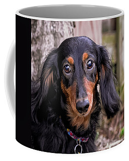 Coffee Mug featuring the photograph Katie by Jim Thompson