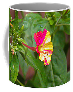 Coffee Mug featuring the photograph 4 Oclocks by Nick Kirby