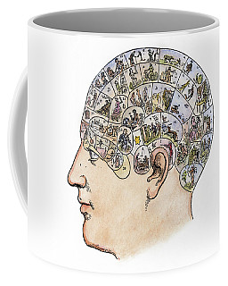 Coffee Mug featuring the painting Phrenology, 19th Century by Granger