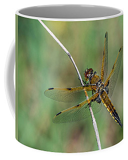 4-spotted Chaser Coffee Mug