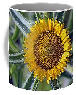 Spring Wild Flower Coffee Mug