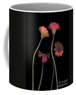 4daisies On Stems Coffee Mug