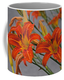 Day Lilly Coffee Mug by William Norton