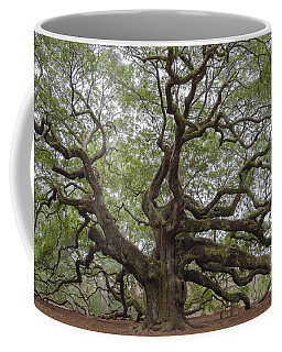 Sc Angel Oak Tree Coffee Mug