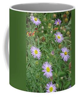 6 Asters Left Coffee Mug