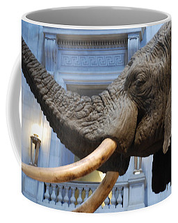 Bull Elephant In Natural History Rotunda Coffee Mug