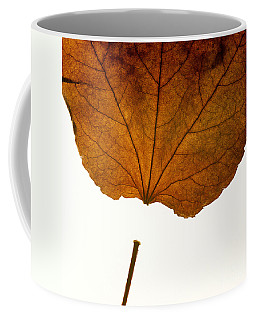 Leaf Coffee Mug