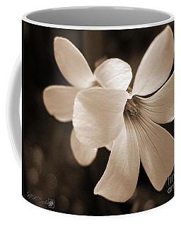 Oxalis Triangularis Or Burgundy Shamrock Coffee Mug
