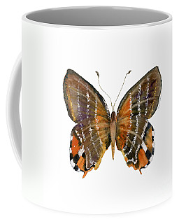 60 Euselasia Butterfly Coffee Mug