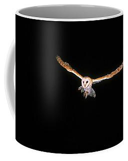 Chouette Effraie Tyto Alba Coffee Mug