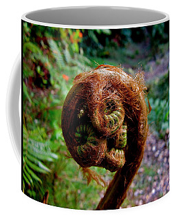Hapu'u Pulu Coffee Mug by Lehua Pekelo-Stearns