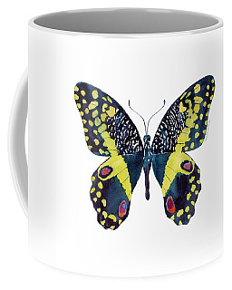 73 Citrus Butterfly Coffee Mug
