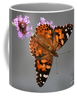 American Painted Lady Butterfly Coffee Mug