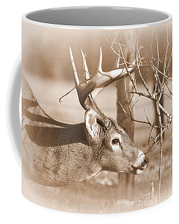 8 Pointer Coffee Mug