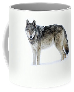 820f Of The Lamar Canyon Pack Coffee Mug