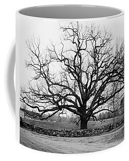 A Bare Oak Tree Coffee Mug