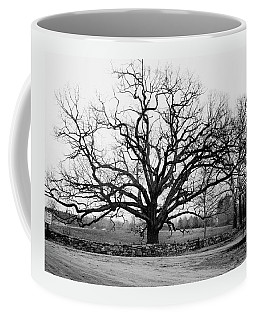 A Bare Oak Tree Coffee Mug