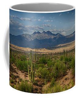 A Beautiful Desert Day  Coffee Mug